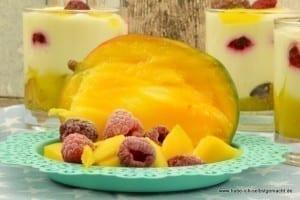 Mango Himbeer Dessert