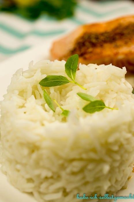 fisch-thai-curry