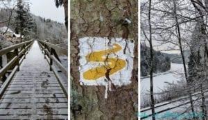 Winterwandern Goldsteig - Erster Tag