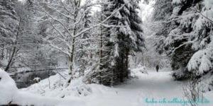 Winterlandschaft Goldsteig