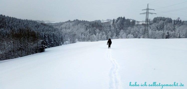 Winterwandern Goldsteig - Blick von der Bergkuppe