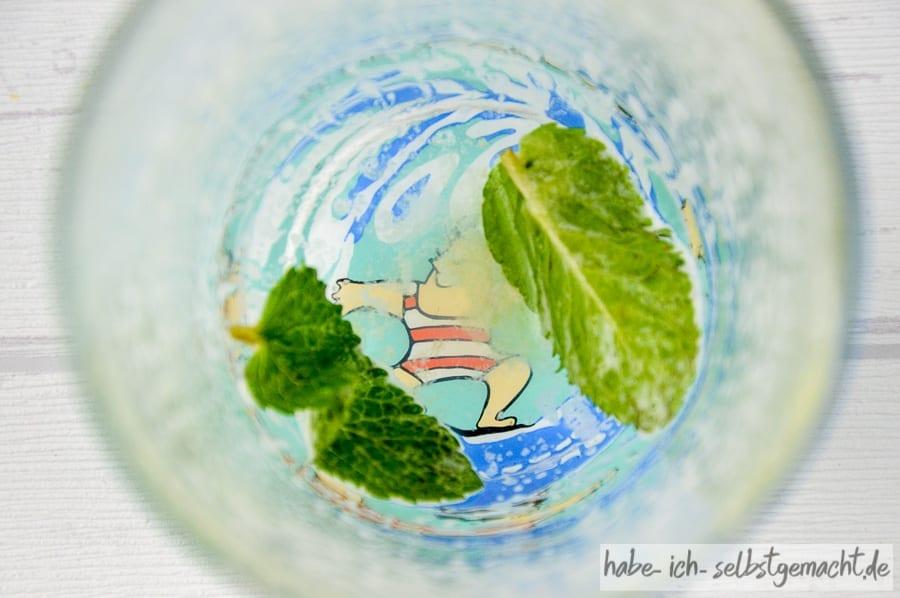 Pomelo Kiwi Apfel Minze Saft | Habe ich selbstgemacht