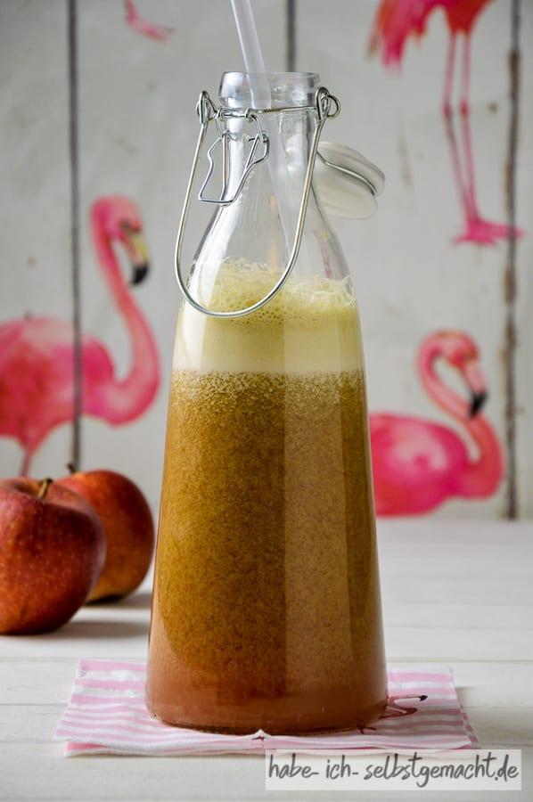 Frisch gepresster Rhabarber Apfel Kiwi Saft