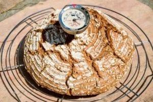 Buchweizen Sauerteig Brot