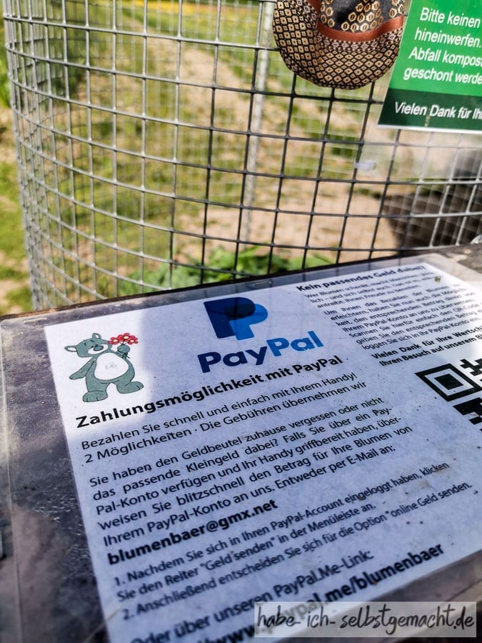 Moderner Breisgau - Paypal auf dem Blumenfeld
