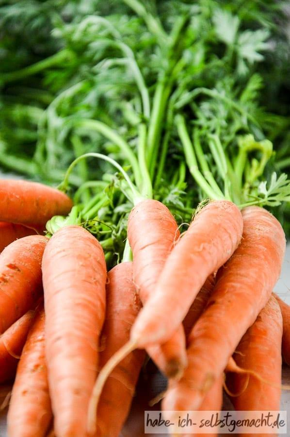 Karottenbund