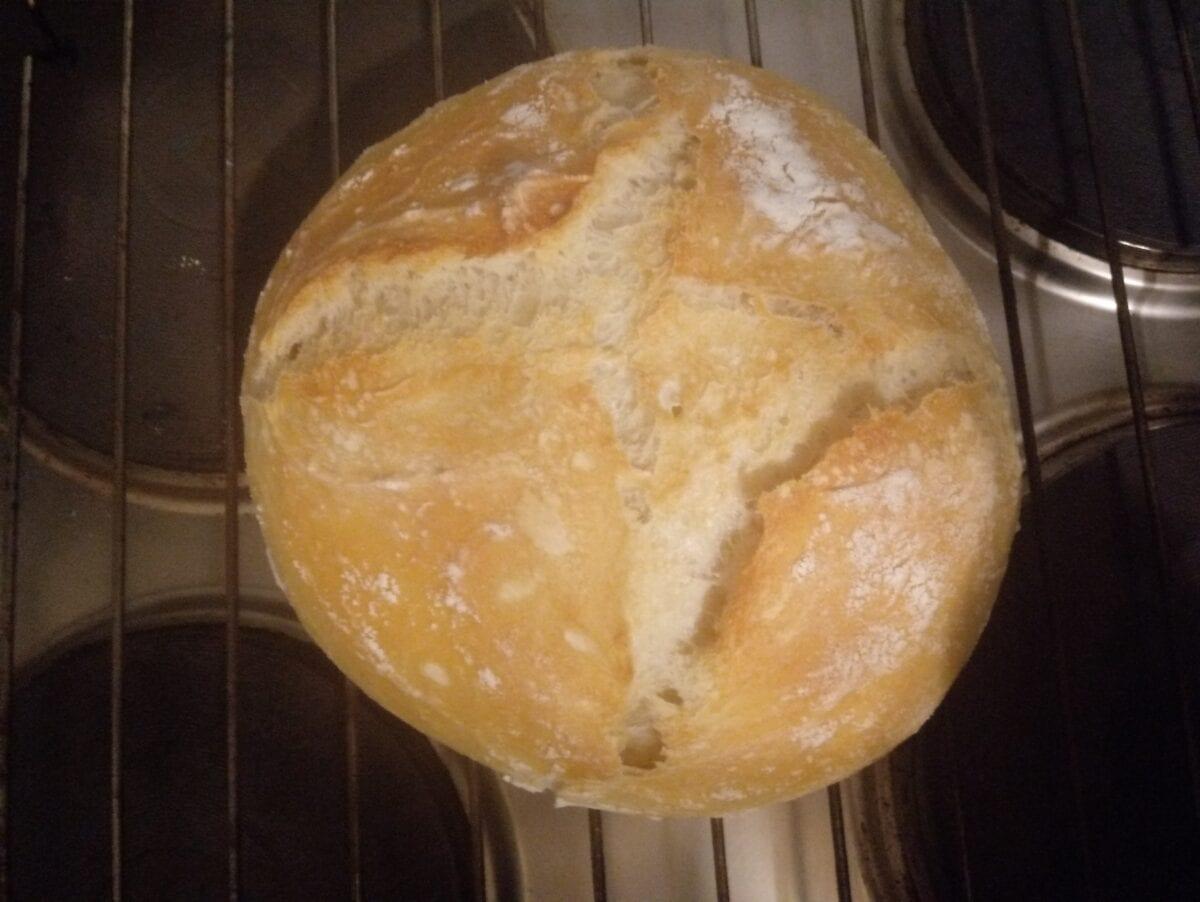 Brot 20   Einfaches Brot für Anfänger   Habe ich selbstgemacht