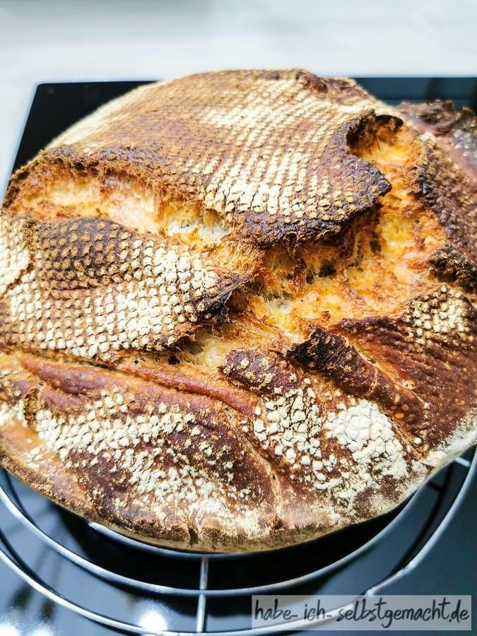 Blogger Missgeschicke - Brot am Dutch Oven hängen geblieben