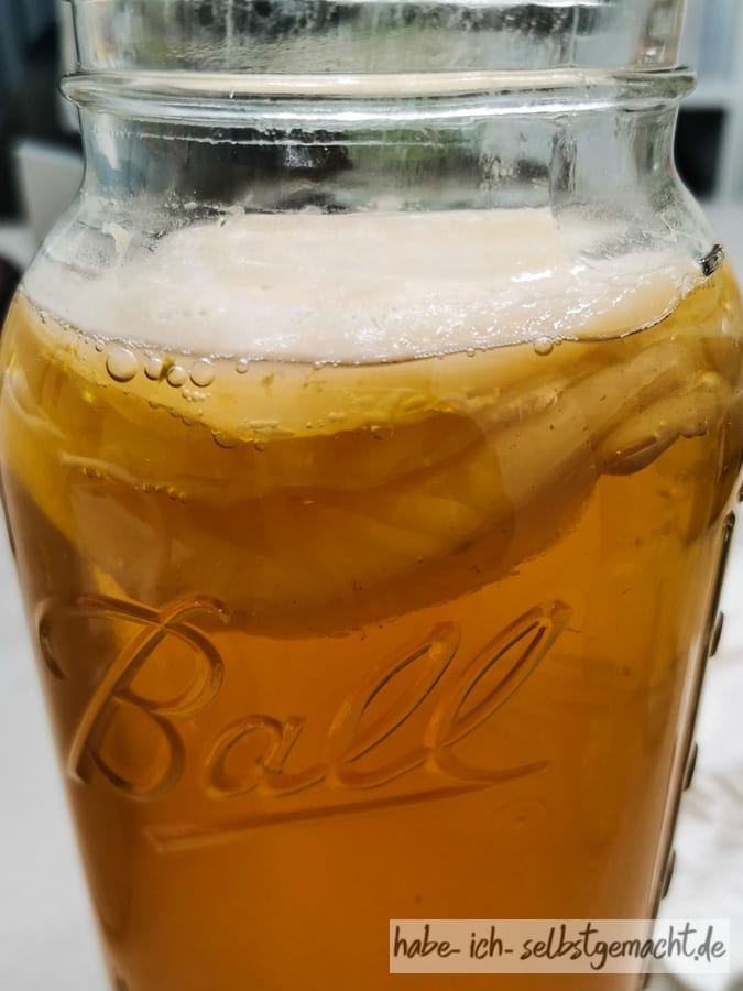 Kombucha selber machen - SCOBI im Glas